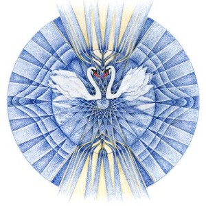 zesde chakra zwanen
